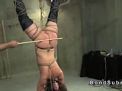 Hanged upside down big booty slave gets ass caned